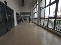 出售碧桂园S4紫薇天悦90平米53万商铺