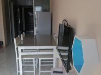 出租滁州苏宁悦城1室1厅1卫48平米1380元/月住宅
