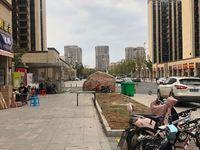 政府旁,碧桂园北岸世家55.4平挑高5米可做两层68万现铺