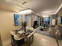 印象菱溪复式高端公寓一口价