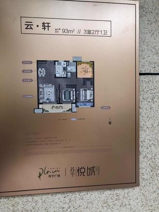 苏宁悦城城南核心地段吾悦广场旁火爆开盘送车位价格低