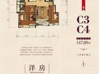 出售金鹏爱丽舍宫4室2厅2卫164平米179.8万住宅