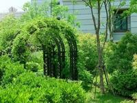 市区三盛颐景御园 别墅 中间位置 边户 大花园 价格可谈