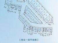 出售东菱城市新地20平米20万商铺