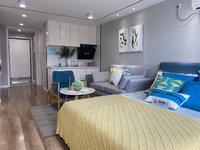 城南特价4.8米Loft复式公寓 轻轨高铁口 星荟城 民用电