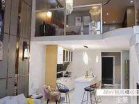 出售中垦流通 国际领寓2室2厅1卫80平米20万住宅时尚挑高两层