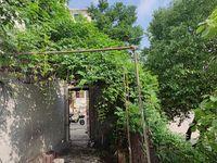 宝塔花园一楼出租 带院子