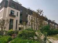 祥生东方樾 下叠 产证144 全小区 价格低 随时看房有钥匙 送院子