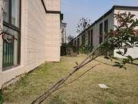政府 学校 公园 旁 和顺东方花园 好楼层 采光带墨镜