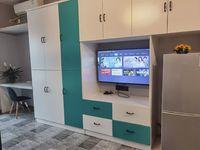 出租苏宁广场1室1厅1卫55平米1600元/月住宅