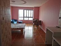 出租市中心 苏宁广场1室1厅1卫50平米1400元/月住宅