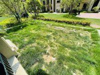 融创御园叠墅,下叠送院子,产证153平,4室2厅3卫,毛坯,165万可谈