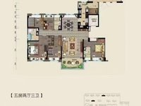 碧桂园仕府公馆大平层 6室2厅3卫 206平米235万住宅开发商精装南北通透