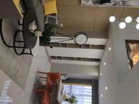 城南核心复试公寓4.8米挑高双层loft 市区旁 七彩欢乐城