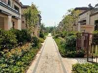 正荣府别墅湿地公园旁黄金地段 上下4层 送地下室80平院子50平露台1;1