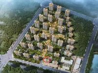 出售碧桂园奥能 罗马世纪城 大明湖 高铁站 3室2厅1卫95平米50万住宅