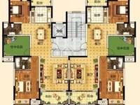 城南,凯迪塞拉河畔洋房,位于7楼,一梯两户,赠送面积大,南北通透户型,价格能谈