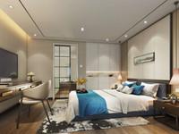 高铁站星荟城 4.8米Loft复式公寓 近轻轨 明湖一中
