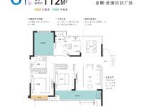 金鹏玖玖广场 特价房 链接城北城东 重要商圈