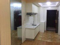 苏宁广场电梯33楼全新精装全配单身公寓整体出租