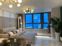 明湖奥体旁 首付9万 苏滁生活广场 loft复式公寓 实际80平 总价30万以内
