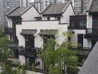 特价现房 南京江北无缝对接 环境好 富力乌衣水镇双拼别野 性价比高