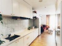 苏宁雅悦 市中心 单身公寓 真实房源 只接受全款