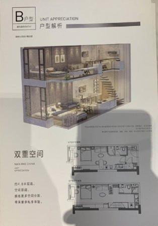 复式双钥匙公寓,挑高4.8米琅琊新区 中垦流通 五中汽车站旁