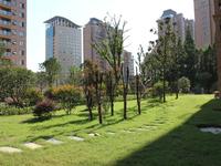 天安都市花园西区.142平方豪华三房,滁州学院对面,地段非常好,无税可按揭