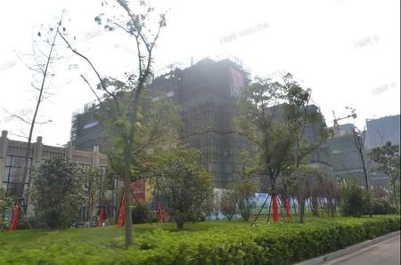 城南政务中心西北边,小区的绿化环境是非常有名的,楼间距也非常大,紫金商业广场旁边