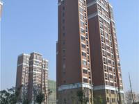 独家 滁州品质小区 业主素质高 无税 三房两厅95万 价格可谈 看房方便