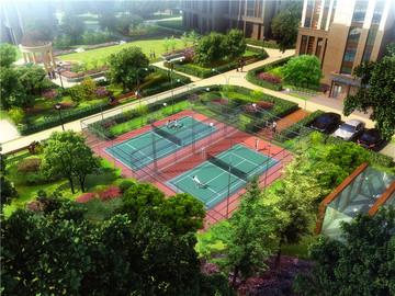 网球场半鸟瞰